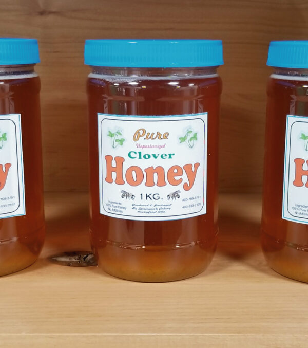 1KG Container of Pure Raw Honey